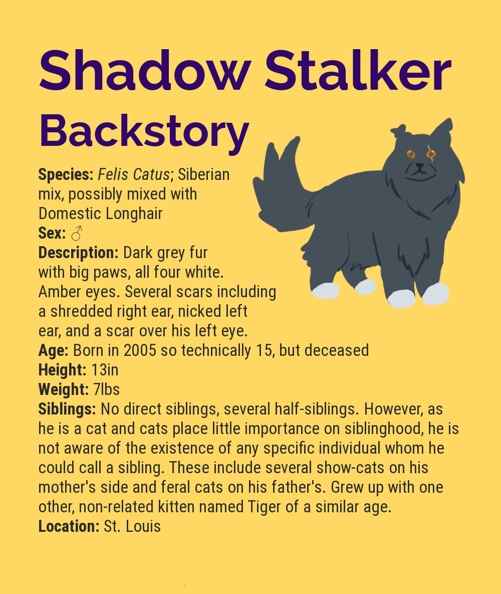 Shadow Stalker Infographic Stub